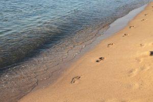 Fußspuren im Sand direkt am Meeressaum - dein Weg aus der Angst