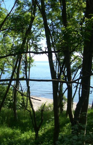 Über mich: Ostsee – Sonne – Sand – Weite