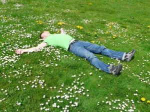 BAMM: Ein Mann liegt völlig entspannt auf einer Blumenwiese